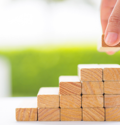The building blocks of professional success